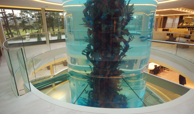 escada-de-vidro-em-torno-de-aquario